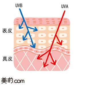 UVアイテムの成分一覧!紫外線吸収剤とは?