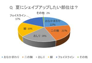 ダイエット円グラフ