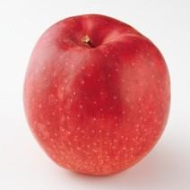 健康と美容の万能薬、リンゴの酵素