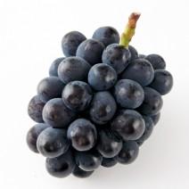 古くから栽培されていた果物
