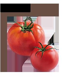 トマトの栄養&おいしい選び方