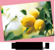 凹凸があり大きい、国産レモン