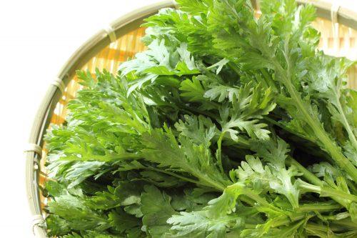 美肌作りにおすすめ野菜