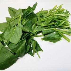 緑×緑!栄養満点シーザーサラダ