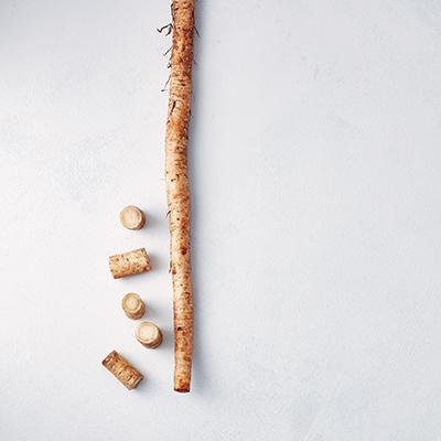ごぼうの栄養&選び方