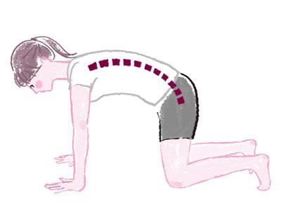 お腹にも美脚にもおすすめ腹筋運動
