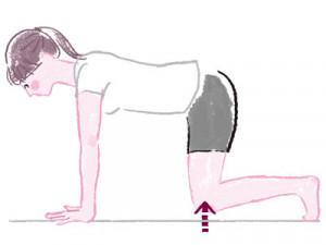 胴長ずんぐり脚を解消!骨盤を支える腹筋を鍛えるストレッチ