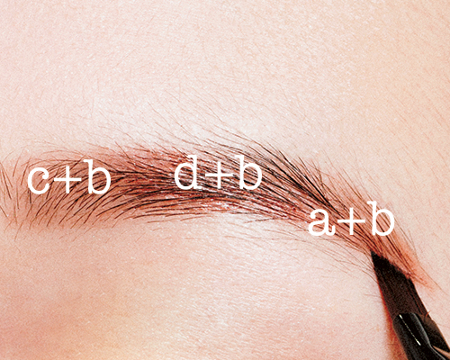 赤みのあるエレガントな眉毛でソフトに