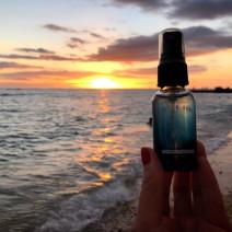 キャリーオンハワイと海