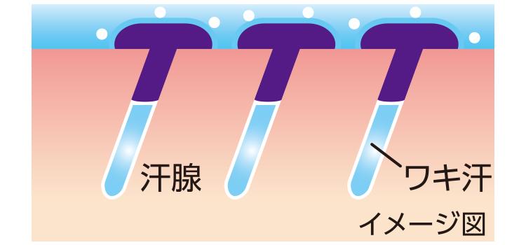 制汗剤「Ban 汗ブロック」シリーズ