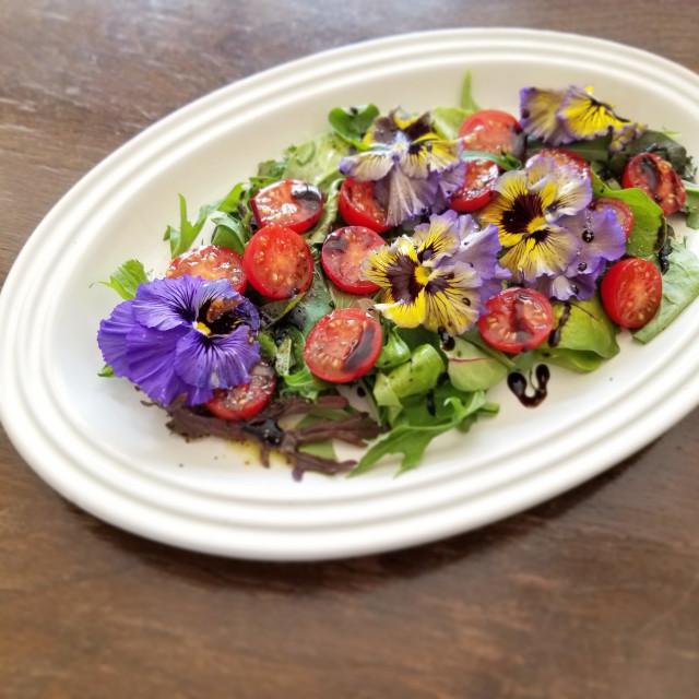 エディブルフラワーサラダで映えるひと皿