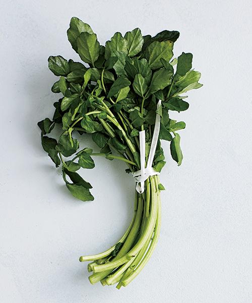 栄養バランス抜群のクレソンの最強レシピ