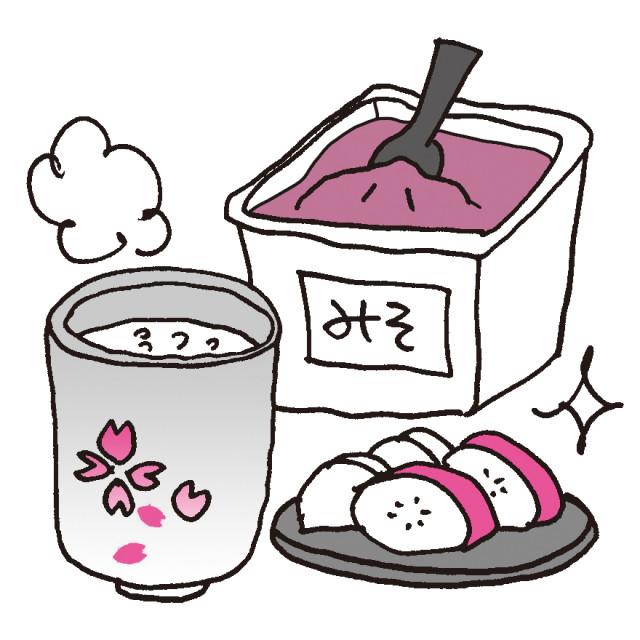発酵食品に含まれる2種類の乳酸菌