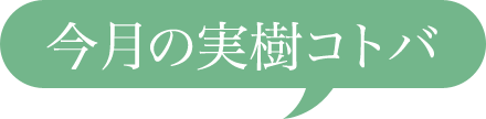 今月の実樹コトバ