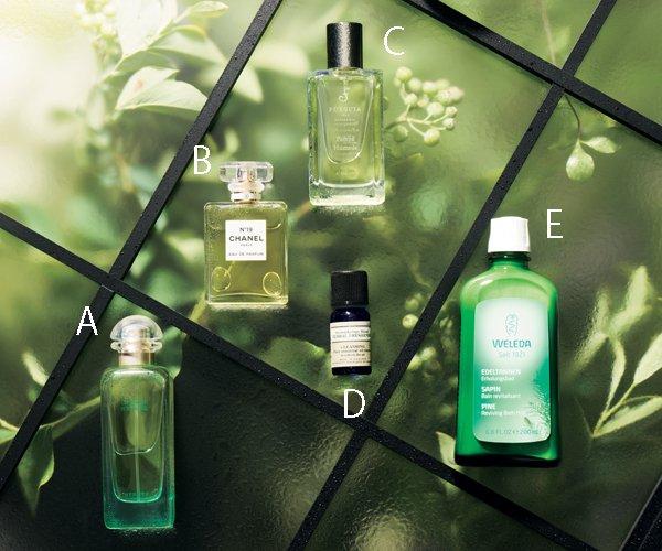 洗練グリーンの香り