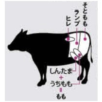 美肌モデルの秘密は肉好きにあった!?