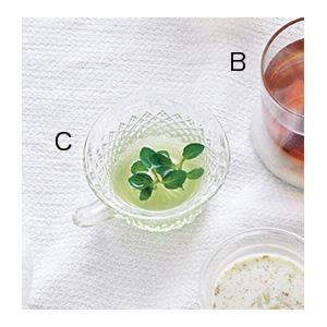 鼻詰まりは冷やすとラクに!緑茶&ミント