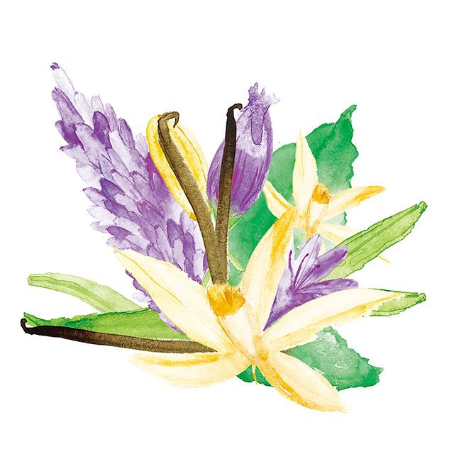 kd_fragrance-flowers-4